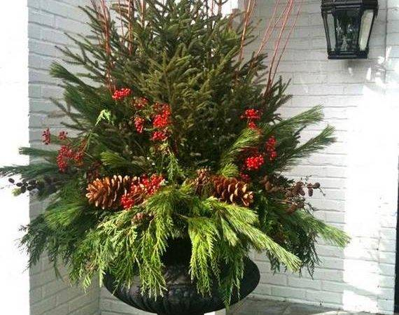 Holidays Pinterest Tomato Cages Deco Mesh