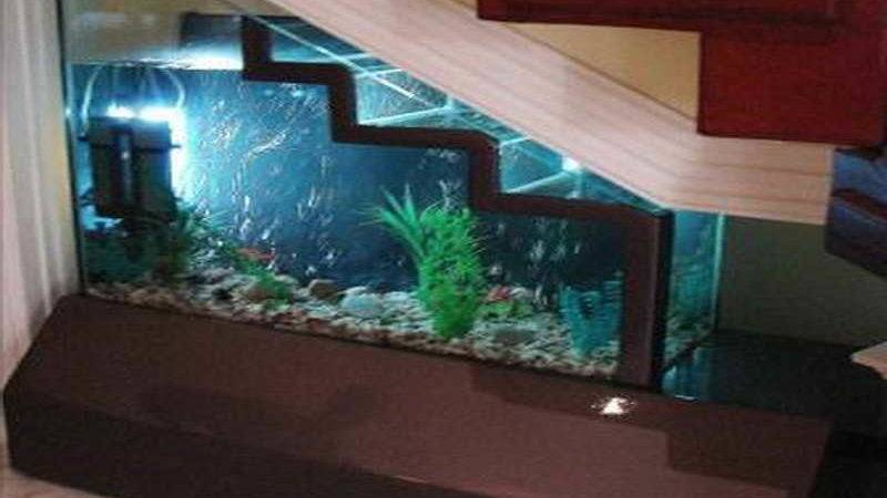 Home Accessories Aquarium Decoration Ideas