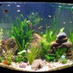 Home Accessories Cool Aquarium Decorations Small