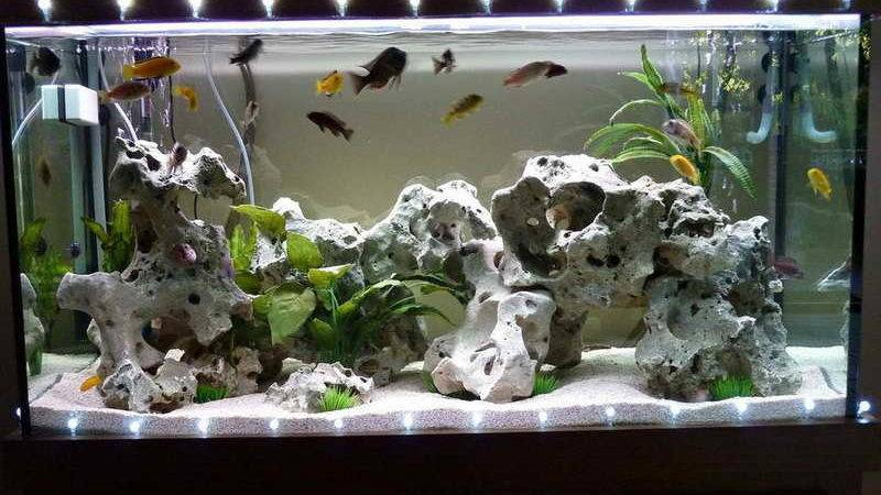 Home Accessories Cool Aquarium Decorations