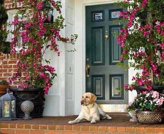 House Entrance Front Door Decoration Ideas
