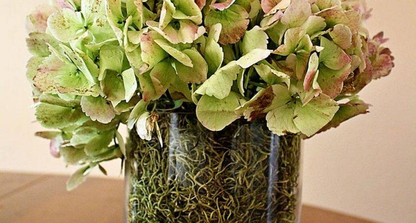 Ideas Flower Vase Fillers Natural Green