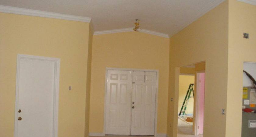 Interior Colour Paint House Home Photos