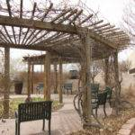 Japanese Pergola Design Plans Malicious Ebx
