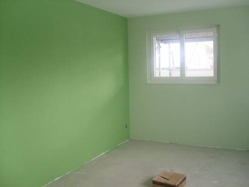 Light Green Carpet Wall Color Vidalondon