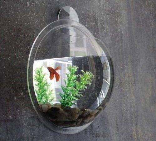 Litre Fish Wall Mounted Bowl Aquarium Hanging Tank