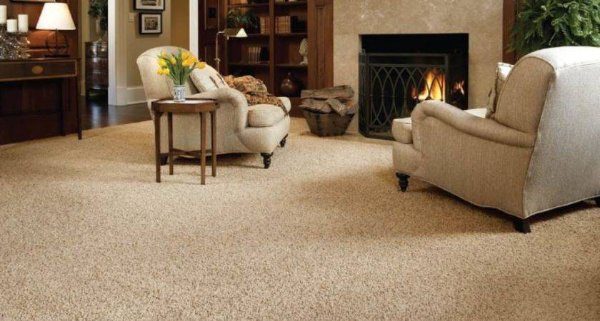 Living Room Breathtaking Carpet Ideas Black