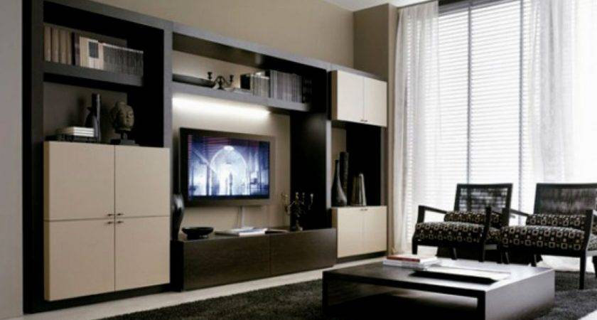 Living Room Cabinet Designs Glamorous Decor Ideas