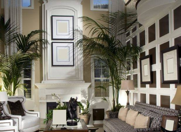 Living Room Chic Decor Design Ideas Two Story
