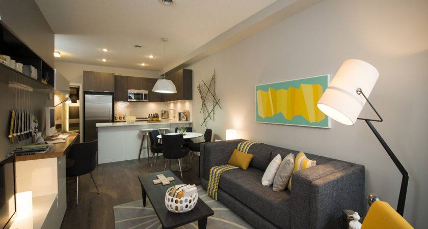 Living Room Kitchen Combo Small Space Design Ideas