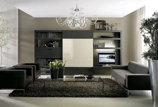 Luxurious Black Grey Living Room Home Interiors