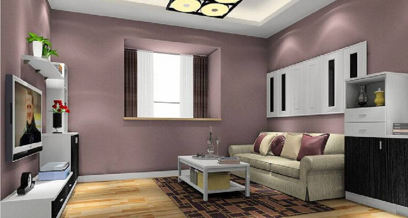 Minimalist Living Room Wall Paint Color House