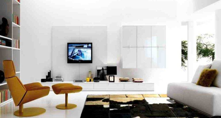 Modern Rugs Living Room Decor Ideasdecor Ideas