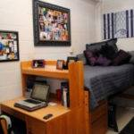 Moving New Dorm Here Some Best Room