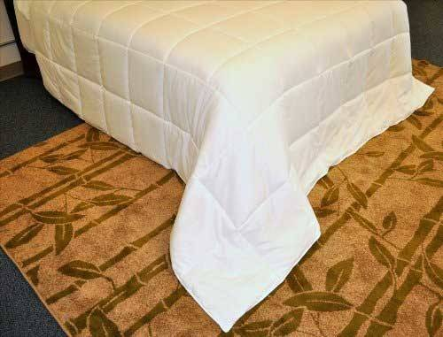 Natural Comfort White Queen Comforter Reviews Home