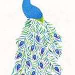 Peacock Drawing Floralaurel Deviantart