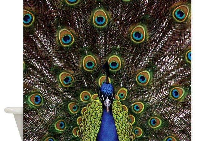 Peacock Shower Curtain Expressivemind