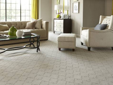 Small Apartment Ideas Wall Carpet