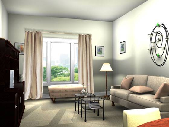 Small Apartment Living Room Decorating Home Design Ideas