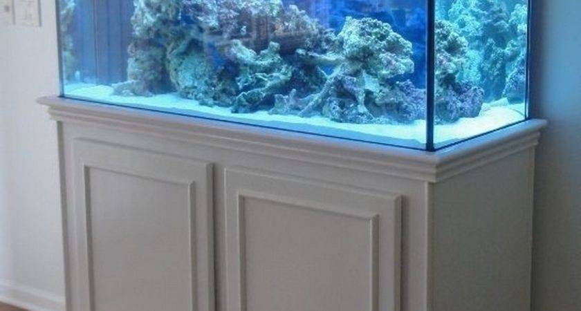 Small Aquarium Stand White Color Ideas Nytexas