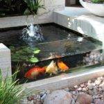 Small Garden Backyard Aquarium Ideas Blow Your