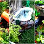 Small Garden Backyard Aquariums Ideas