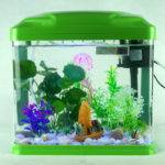 Small Turtles Aquarium Ideas