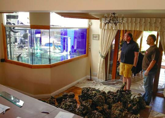 Something Fishy Going Man Sends Wife Holiday