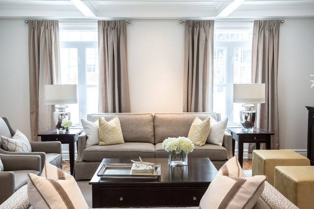 Sophisticated Living Room Transitional