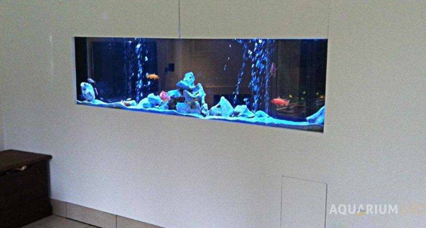 Through Wall Fish Tank Inwall Aquarium Aquariumgroup