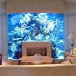 Unusual Built Aquariums Adding Beautiful Green Ideas