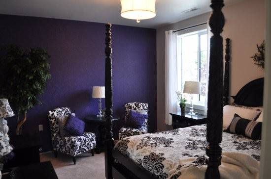 Violet Room Beautiful Black White Touch