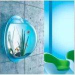 Wall Mounted Acrylic Fish Tank Bowl Bubble Aquarium
