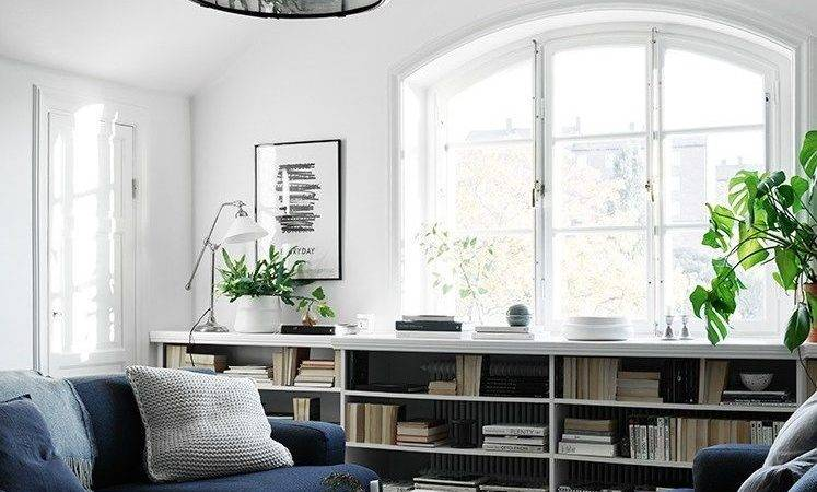 White Living Room Navy Blue Couch Photos