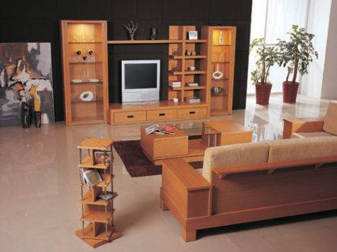 Woodwork Drawing Room Furniture Designs Pdf Plans