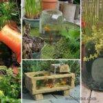 Wow Small Garden Backyard Aquarium Ideas Blow