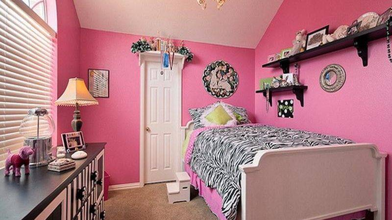 Zebra Bedroom Decorating Ideas Decor